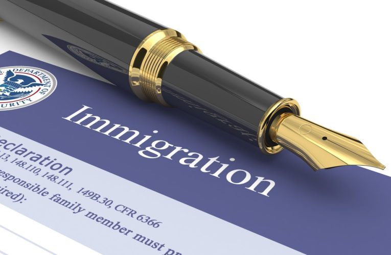 Difference between Immigration Lawyers & Immigration Consultants
