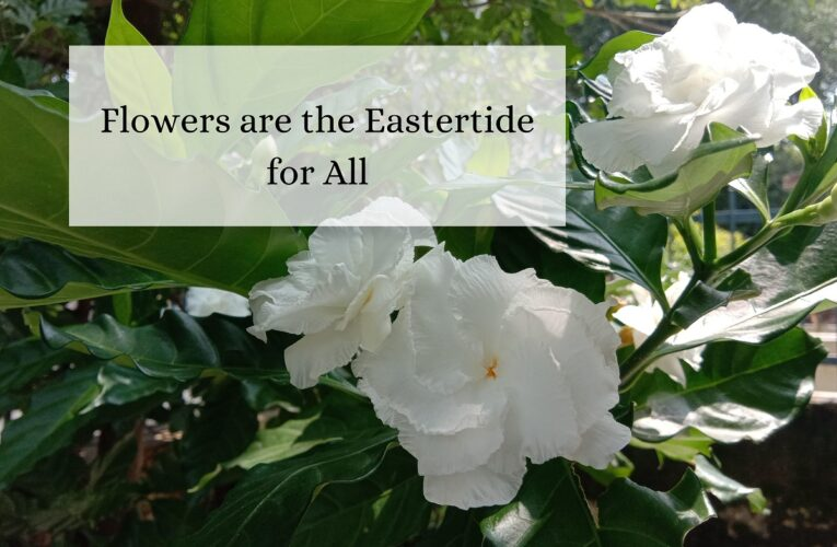 Flowers are the Eastertide for All