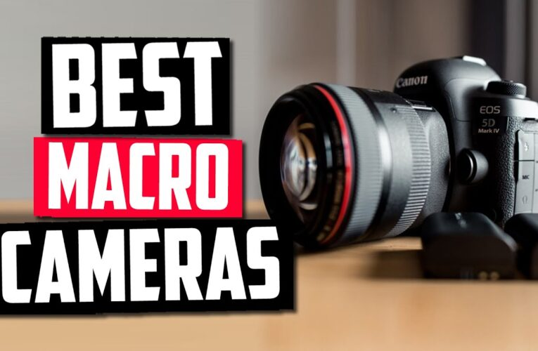 Best Camera for Macro
